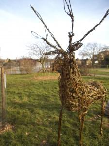Reindeers in Chestnuts Park 042